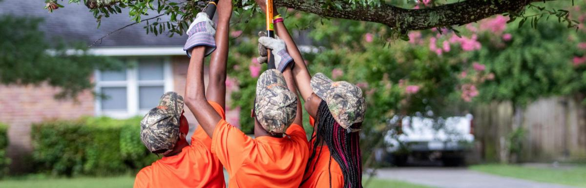 Youth Trimming Trees