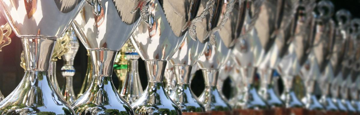 Awards lined on a table