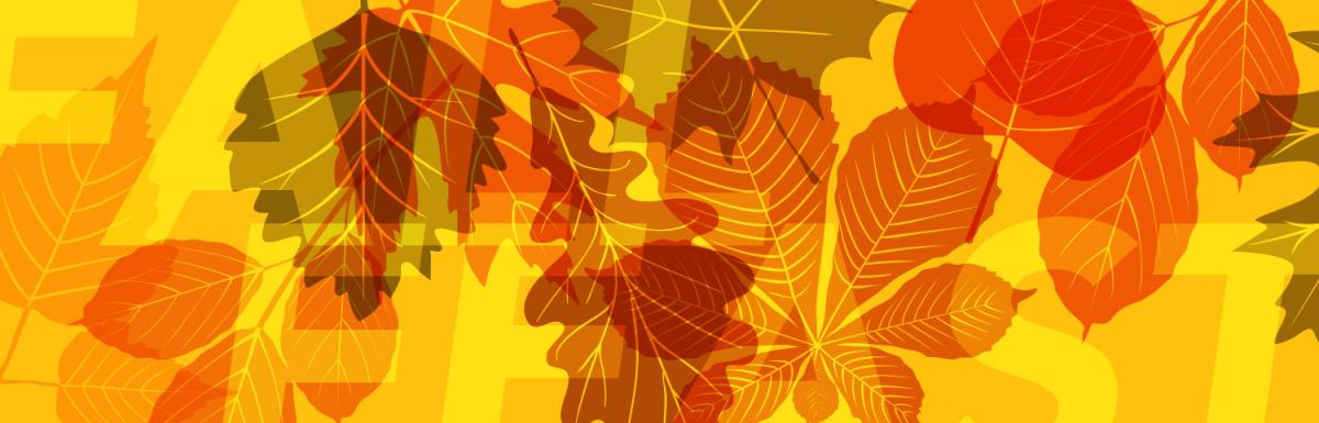 Assorted Leaves on Bright Yellow Background